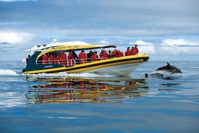 Tasman Island 3 Hour Cruise From Port Arthur