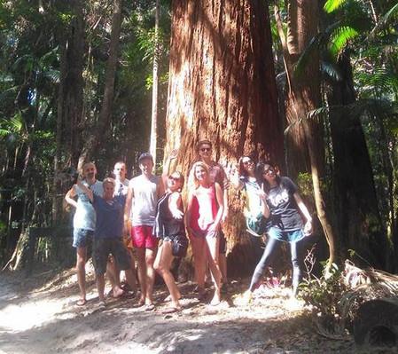 Central Station Rainforest tour