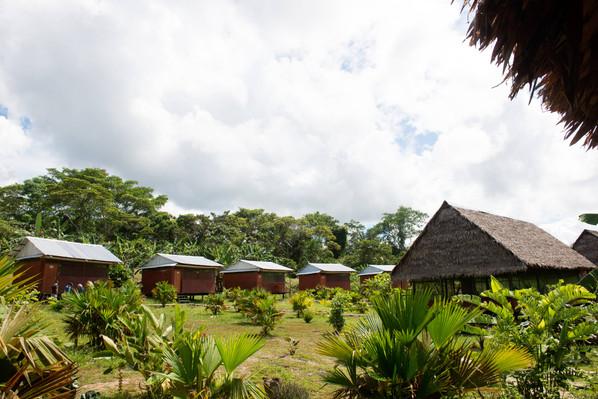 anaconda expedition   6 day iquitos amazon tour 5