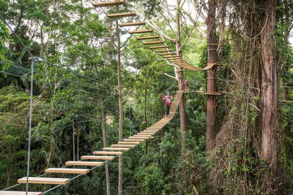 Adventure Park Ropes Course