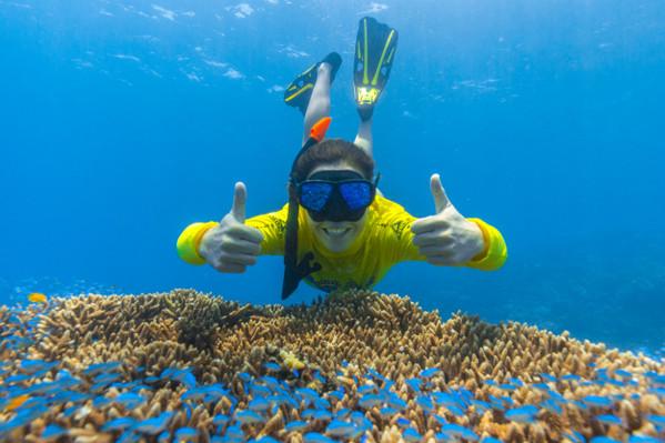 Ocean Safari Great Barrier Reef Adventure Deal