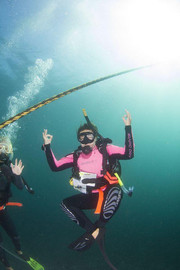Introductory Dive Course At Julian Rocks