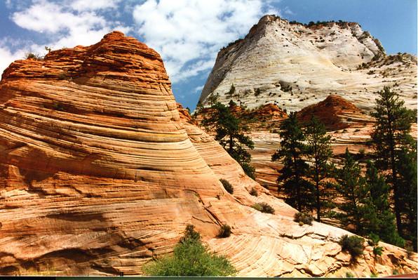 Zion National Park Tour special
