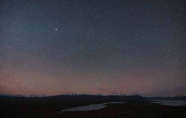 Pegasus stargazing