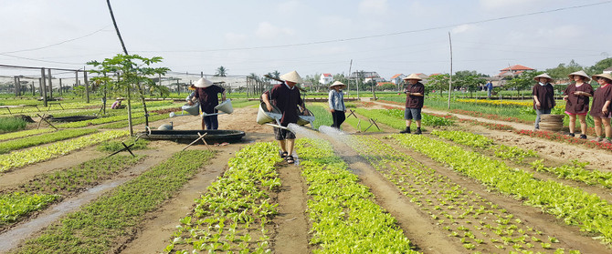Tra Que Farming tour
