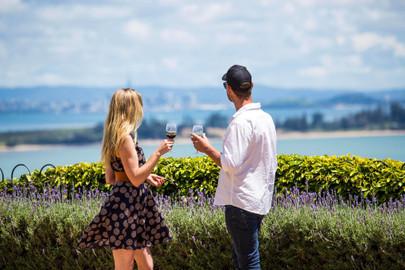 The Essence of Waiheke Wine Tour
