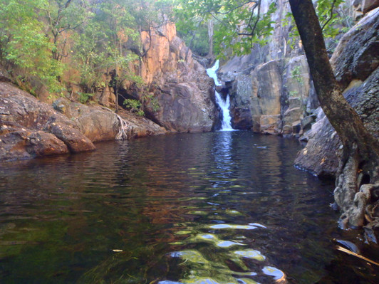 3 Day Tours to Litchfield and Kakadu National Parks