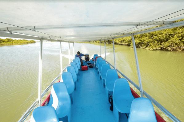 quepos-mangrove