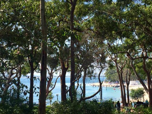 Port Stephens beach tour reviews