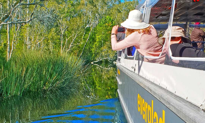 Noosa Everglades Cruise & Highlights Tour Inc. Lunch