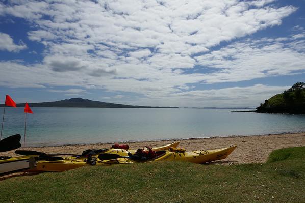 NZ rangitoto island kayak deals