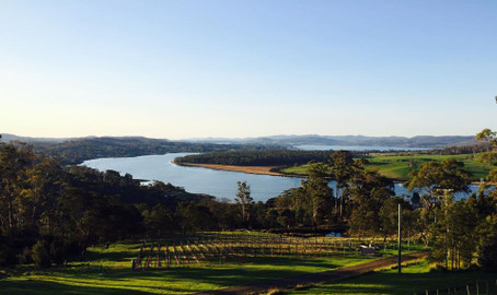 Tamar Valley Discovery Wine Tour