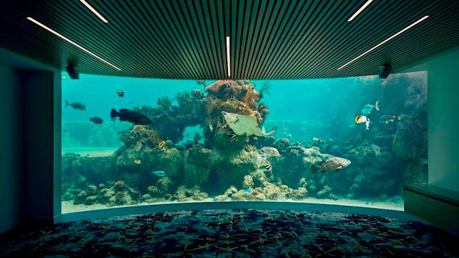 Daydream Island underwater Observatory