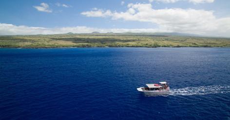 Kawaihae Wildlife Watch And Snorkel Cruise