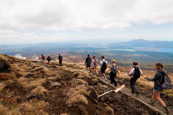 Tongariro Alpine Crossing Transfers