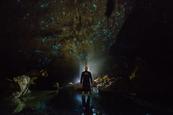 best glowworm cave tour