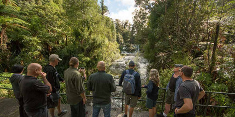 Auckland - Best of Both Worlds City And Nature Tour