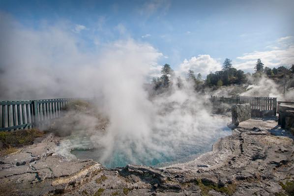 geyser new zealand