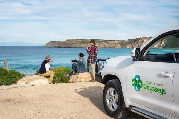 Kangaroo Island Wildlife Discovery Tour Deals