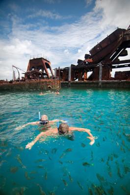 Moreton Island Tangalooma Snorkeling