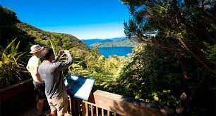 Guided Queen Charlotte Track Walk