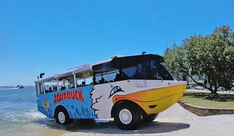 Sunshine Coast Aquaduck Tour