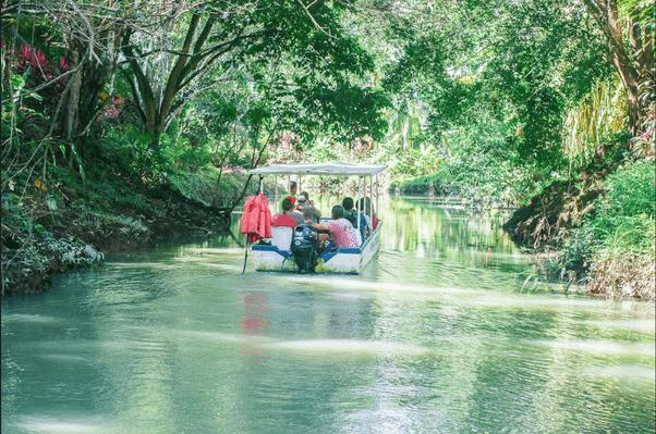 boat-mangrove