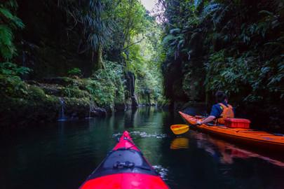 Scenic Lake Mclaren Kayak Tour - 3 Hours