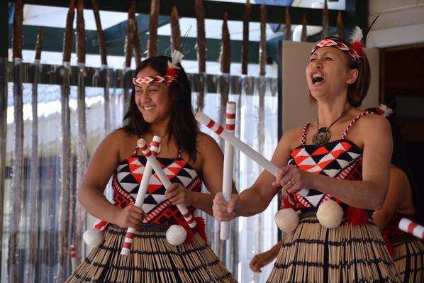 maori culture tour