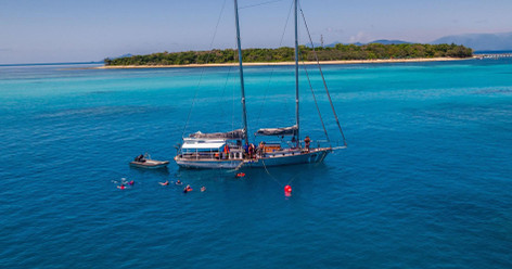Sail, Snorkel, Dive Green Island And Great Barrier Reef