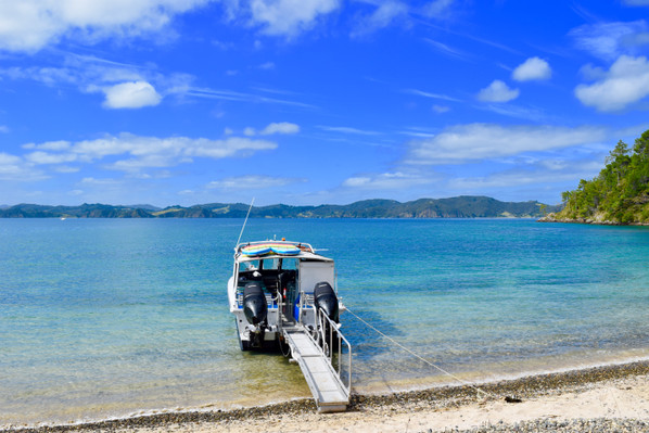 3 hour Cruise - Bay of Islands