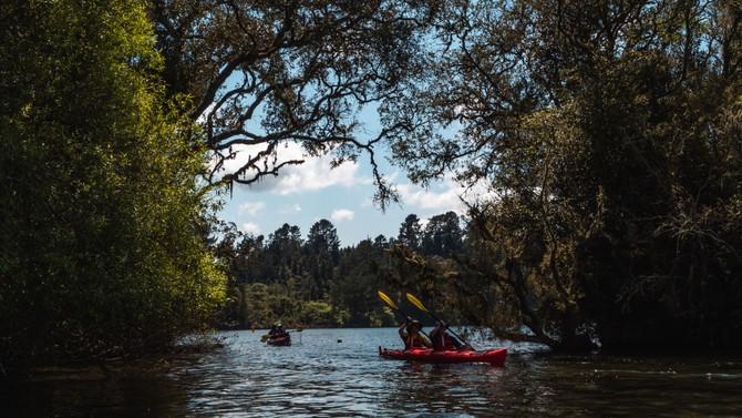 lake rotoiti tour kayak tour
