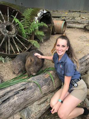 Kuranda Koalas
