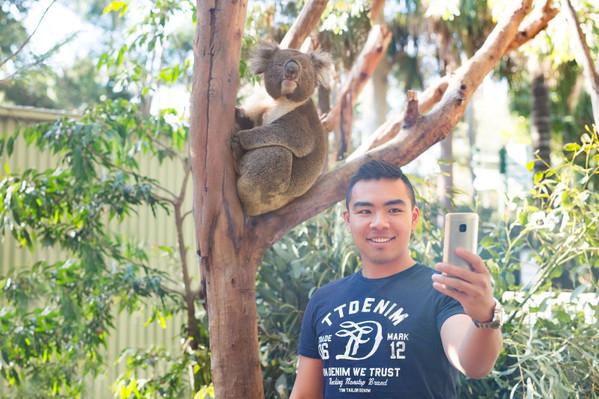 Blue Mountains tour deals
