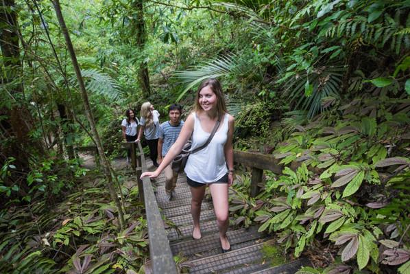 waitomo aranui cave tour