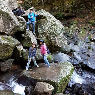 Lamington National Park Hikes