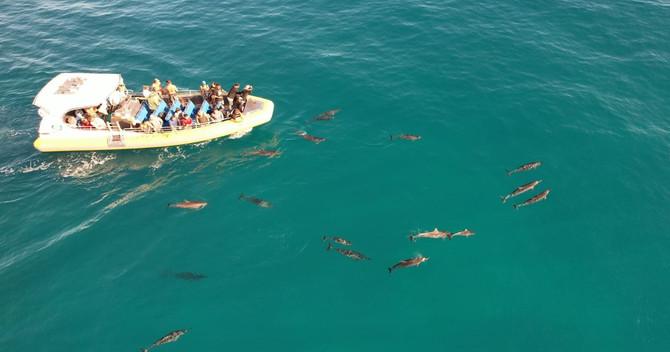 NaPali Coast Cruise Deals