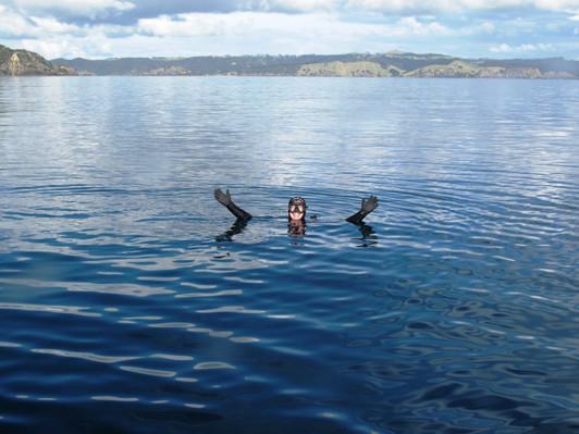 Bay of Islands scuba diving voucher