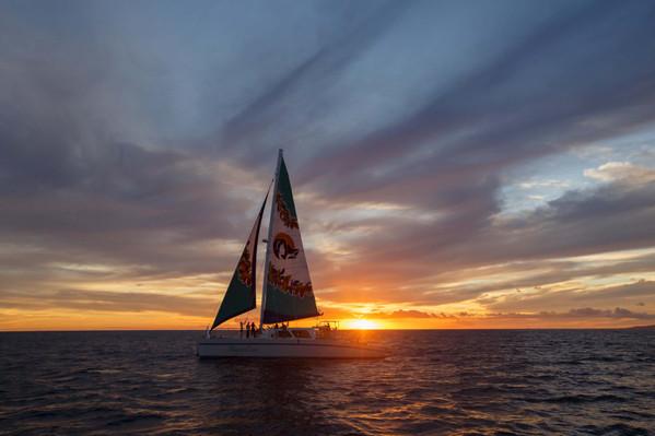 Honu Lani sunset