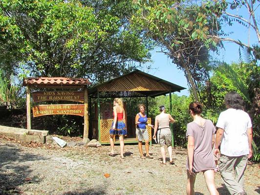 wildlife-animal-sanctuary-costa-rica