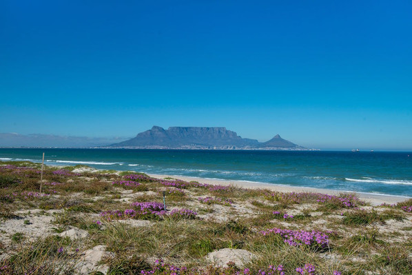 Cape Town South Africa tour