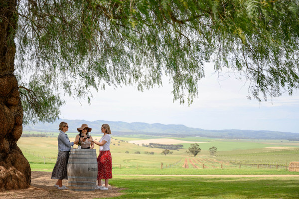 Barossa Valley Food and Wine Tour Sealink