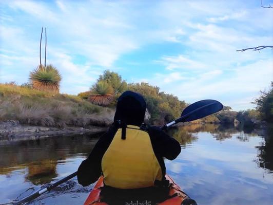 Kangaroo Island Guided Kayak Tour Harriet River