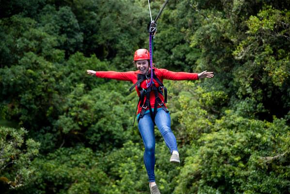 treetop adventure park rotorua