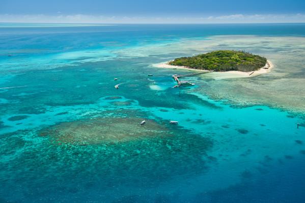Big Cat Green Island Cruise Full Day Deals