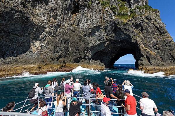 Bay of Islands Tour From Auckland