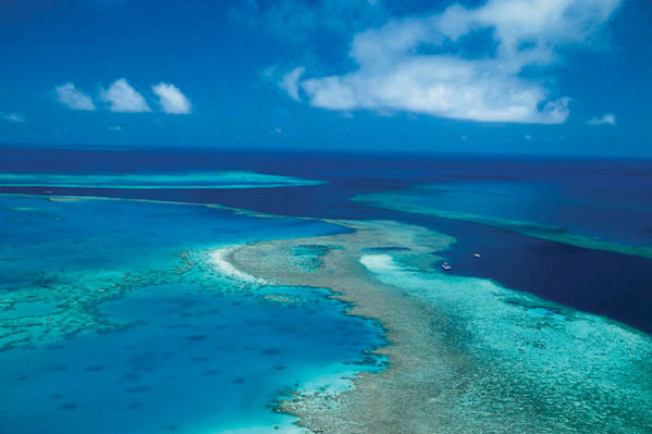 Great Barrier Reef tour discounts