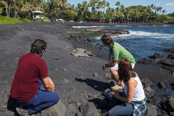 Twilight Volcano and Stargazing Tour deals