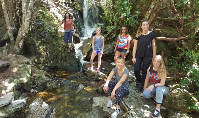 wildlife tasmania tour