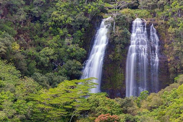 Hawaii Hollywood Tour